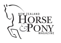 New Zealand Horse and Pony