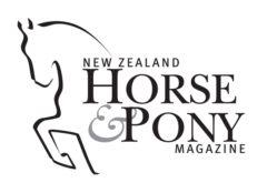 New Zealand Horse and Pony